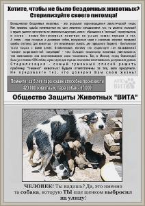 Общество Защиты Животных ВИТА