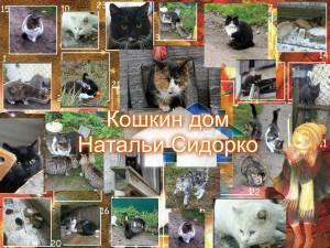Кошкин дом Наталь Сидорко